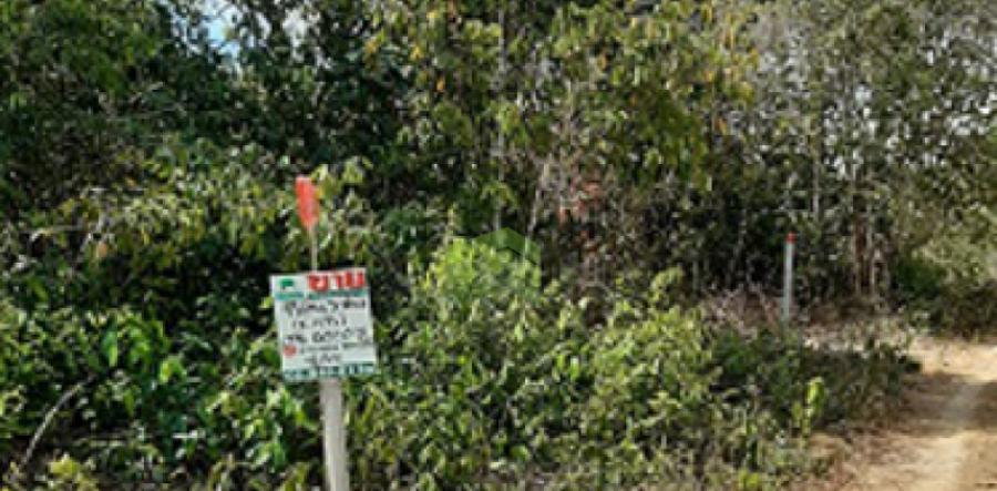 ขายด่วน ที่ดินเปล่า ซอย กำลังชัย เนื้อที่ 49.90 ตร.ว ถนน สนามบิน ลพบุรีราเมศวร์ ควนลัง หาดใหญ่ สงขลา ทำเลดี ใกล้สนามบินหาดใหญ่