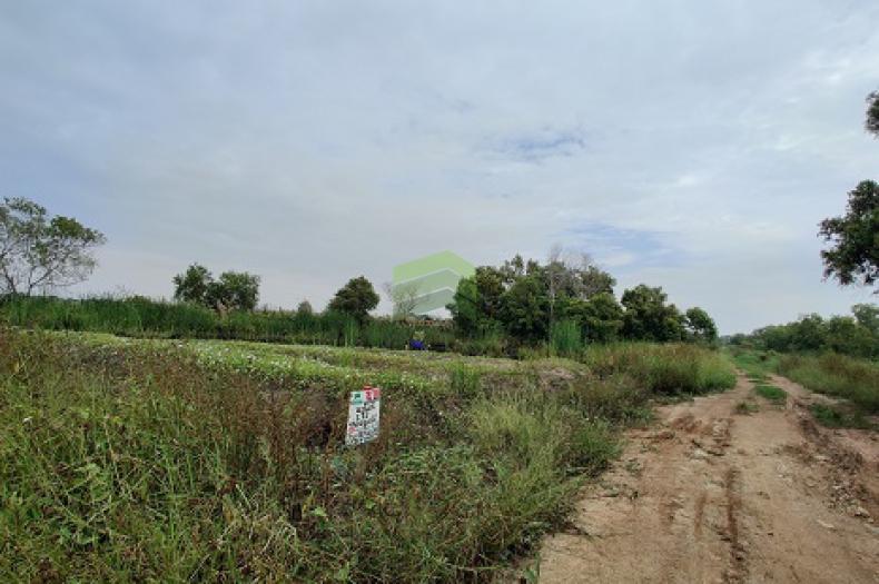 ขายด่วน ที่ดินเปล่า 1 ไร่ หน้ากว้าง 40 x 40 เมตร ถนน บึงขวาง มีนบุรี ราต่อรองได้