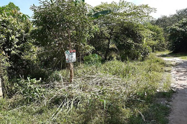 ขายด่วน ที่ดินเปล่า ซอย เวฬุวัน 14 สะเตง เนื้อที่ 47.70 ตร.ว เมืองยะลา