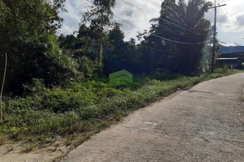 ขายด่วน ที่ดิน พร้อมบ้านชั้นเดียว ถนน โคกเคียน เมืองนราธิวาส เนื้อที่ 381.30 ตร.ว. ทำเลดี เหมาะพักอาศัย