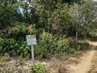 N0601064, ขายด่วน ที่ดินเปล่า ซอย กำลังชัย เนื้อที่ 49.90 ตร.ว ถนน สนามบิน ลพบุรีราเมศวร์ ควนลัง หาดใหญ่ สงขลา ทำเลดี ใกล้สนามบินหาดใหญ่